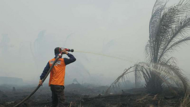 Upaya pemadaman kebakaran hutan dan lahan di Sumatera.