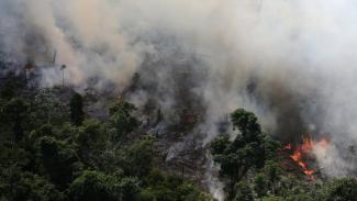 Inpe mengatakan telah mendeteksi lebih dari 72.000 kebakaran sejauh ini pada tahun 2019. - Reuters