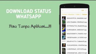 Download Status WhatsApp