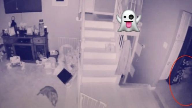 Penampakan hantu di rumah.
