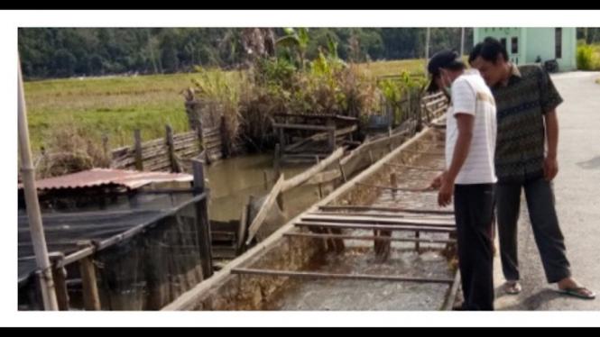 Saluran irigasi di Desa Limok Manaih, Kecamatan Keliling Danau, Kabupaten Kerinci, Provinsi Jambi.