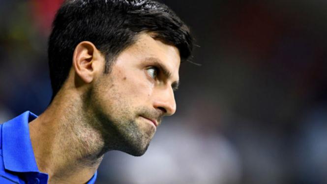 Petenis Serbia, Novak Djokovic