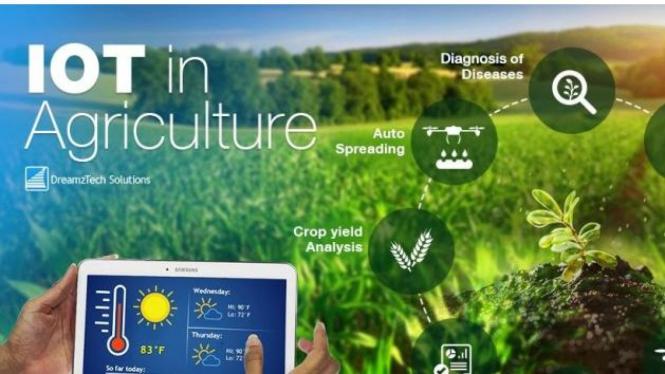 (Sumber:https://www.teknoiot.com/bagaimana-sensor-iot-dapat-membantu-petani-mengelola-pertanian-lebih-mudah/)