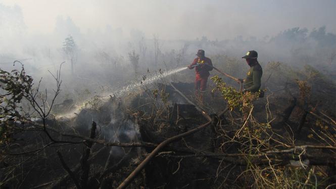 Pemadaman kebakaran hutan dan lahan (karhutla) di Kalimantan Selatan beberapa waktu lalu.