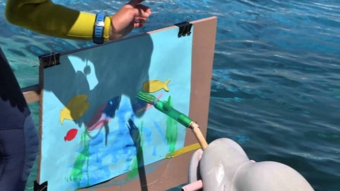 Seekor lumba-lumba melukis