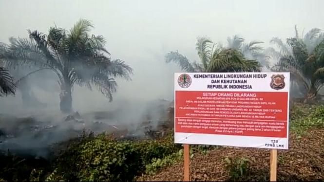 Kebakaran hutan di Kalimantan Barat