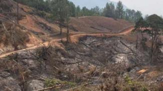 Kebakaran hutan di Kabupaten Solok, Sumatera Barat