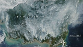 Citra kebakaran hutan Kalimantan dari satelit antariksa NASA