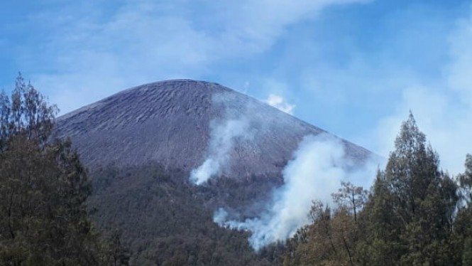 Kebakaran di Gunung Semeru.