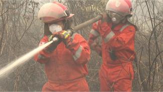 Pemadam kebakaran, relawan, hingga warga awam bahu-membahu memadamkan api di Palangkaraya, Kalimantan Tengah. - BBC News Indonesia