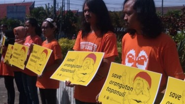 https://thumb.viva.co.id/media/frontend/thumbs3/2019/09/21/5d850dce1af4b-proyek-plta-ancam-keberadaan-orangutan-tapanuli_375_211.jpg