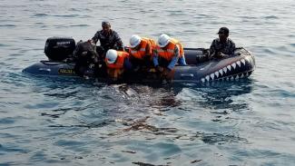 Penyelamatan hiu totol