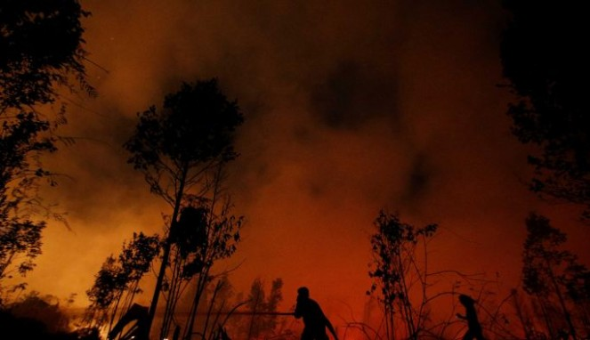 https://thumb.viva.co.id/media/frontend/thumbs3/2019/09/22/5d86e2a72c494-video-300-ribu-hektar-hutan-indonesia-sudah-terbakar-sejak-januari-2019_663_382.jpg