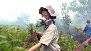 https://thumb.viva.co.id/media/frontend/thumbs3/2019/09/24/5d89cd3aa17be-kebakaran-hutan-kami-adalah-penjaga-hutan-kalimantan-kisah-para-perempuan-penakluk-api_375_211.jpg