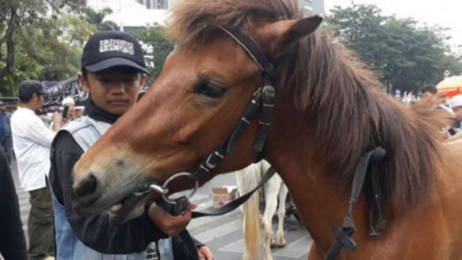 Peserta Aksi Mujahid 212 membawa kuda