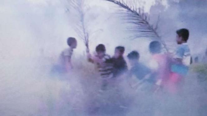 Kebakaran hutan dan lahan di Riau.