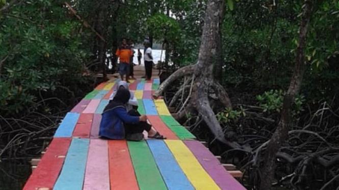Hutan Mangrove di Desa Kacepi.