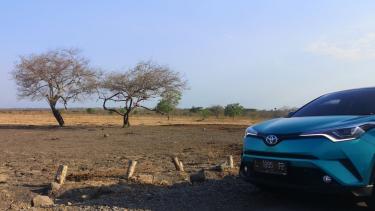 Test drive Toyota C-HR Hybrid di Taman Nasional Baluran Jawa Timur