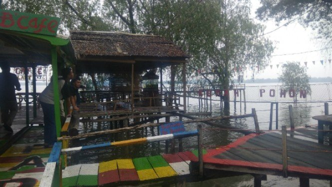 Wisata rumah pohon Kampung Laut Jambi