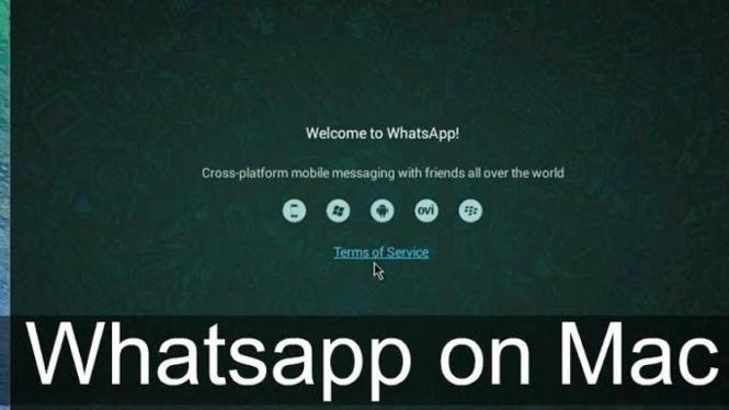 WhatsApp di mac