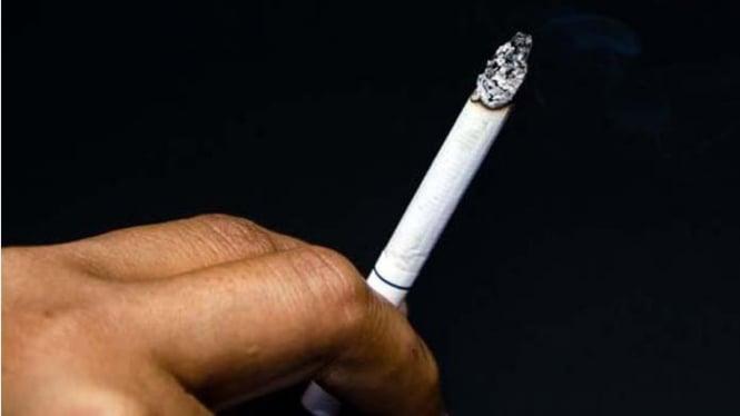 Sebatang rokok.
