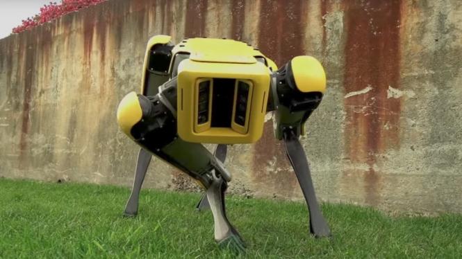 Spot, robot anjing buatan Boston Dynamics