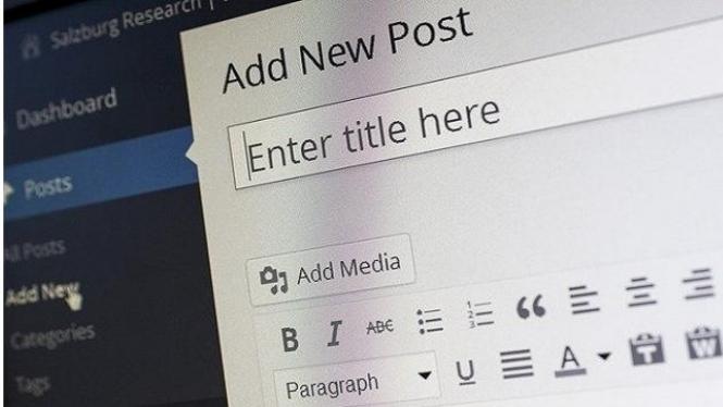 Suka Duka Menjadi Seorang Blogger