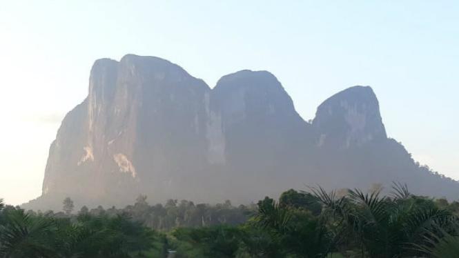Bukit Batu Daya Kalimantan Barat