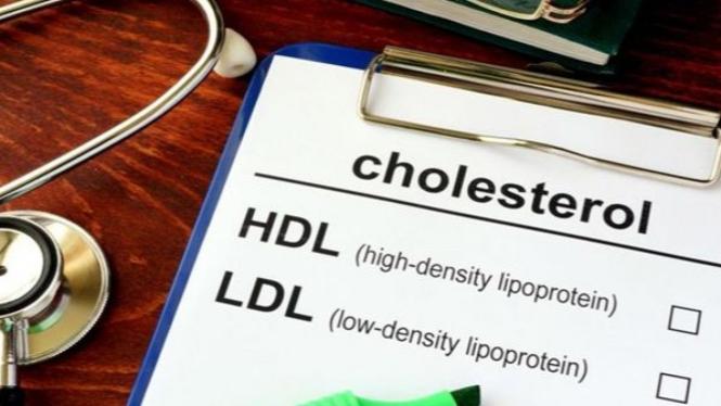 Ilustrasi Kolesterol