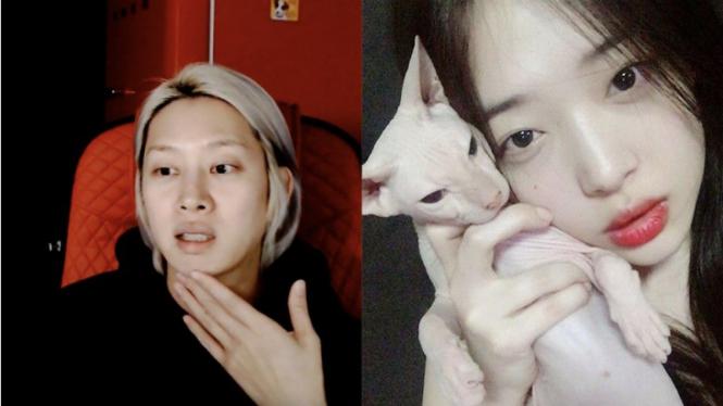 Heechul Super Junior adopsi kucing peliharaan mendiang Sulli.