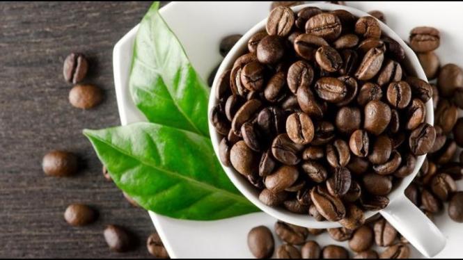 kopi terbaik