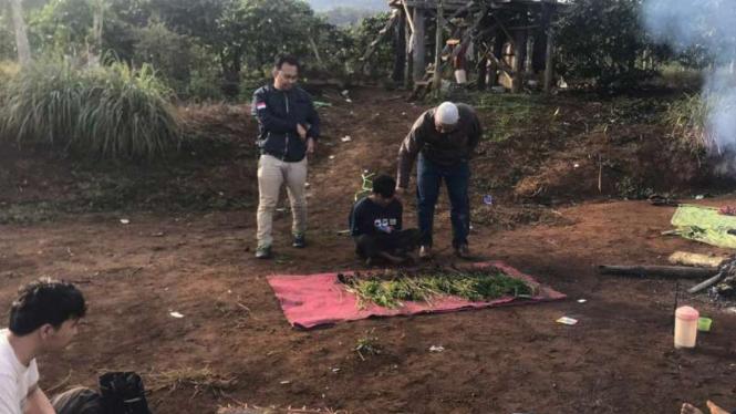 Polisi menangkap pengedar ganja sekaligus menemukan Sebuah ladang ganja seluas tiga hektare ditemukan di wilayah Bukit Padi Ampe, Kecamatan Dempo Selatan, Pagaralam, Sumatera Selatan, Jumat, 17 Januari 2020.