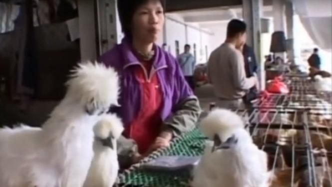 Pasar Hewan di Wuhan