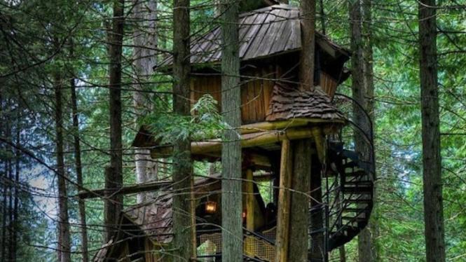 Rumah Pohon The Seven Dwarf di Kolombia