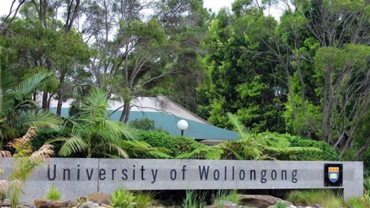 Universitas Wollongong di Australia memangkas pengeluaran akibat larangan berpegian mahasiswa China.