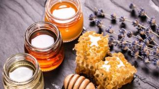 manfaat menakjubkan dari madu