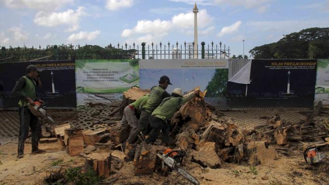 Evakuasi Pohon Tumbang di Monas