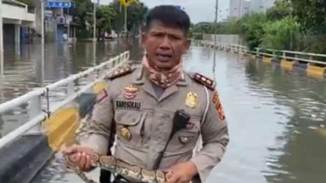 AKBP Dermawan Karosekali melaporkan banjir dengan memegang ular