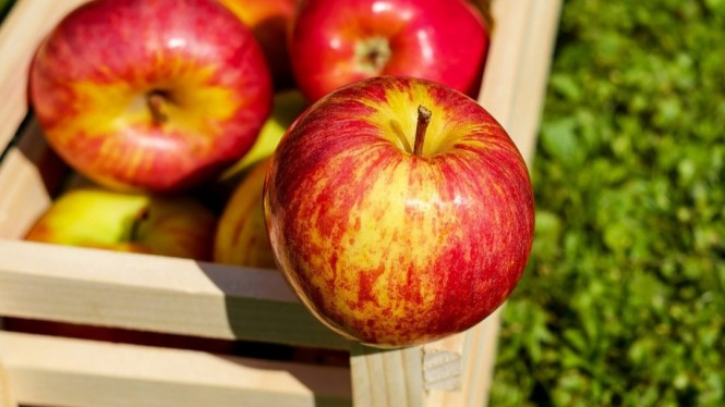 Buah Apel di Keranjang