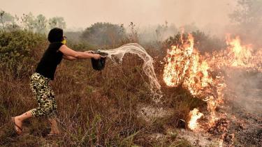 https://thumb.viva.co.id/media/frontend/thumbs3/2020/03/27/5e7d9d7b97f7b-mungkinkah-fatwa-agama-membantu-cegah-kebakaran-hutan-di-indonesia_375_211.jpg