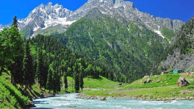 VIVA Militer: Lembah Surga Kashmir.
