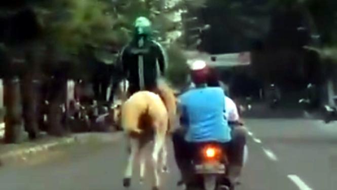 Ojol naik kuda