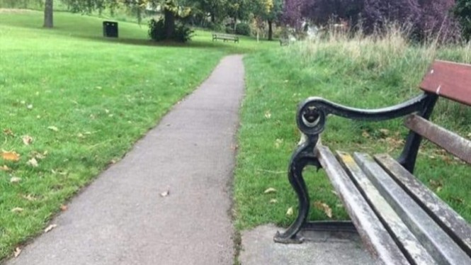 ilusi optik sebuah taman.