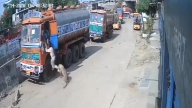 Macan tutul serang manusia di India.