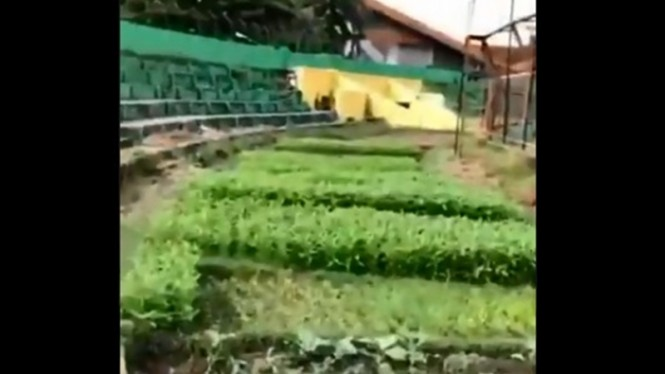 Kebun sayur di Stadion Andi Mattalatta