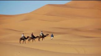 Ilustrasi padang pasir di Timur Tengah (Foto/Fixabay)