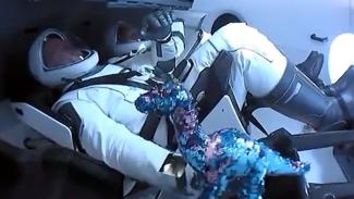Boneka dinosaurus ikut misi luar angkasa