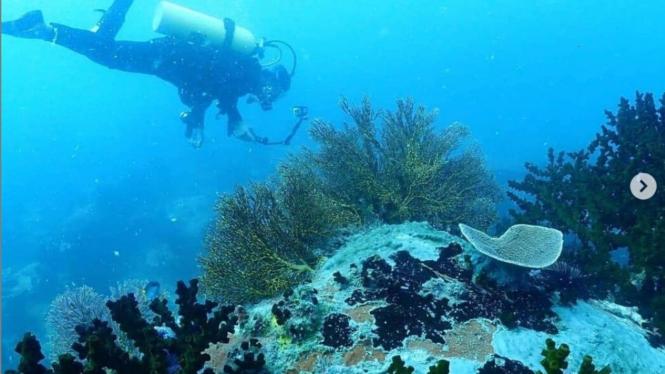 VIVA Militer: Potensi Maritim di Pulau Natuna