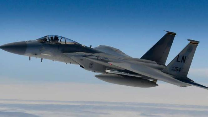 VIVA Militer: F-15 Egale Amerika.
