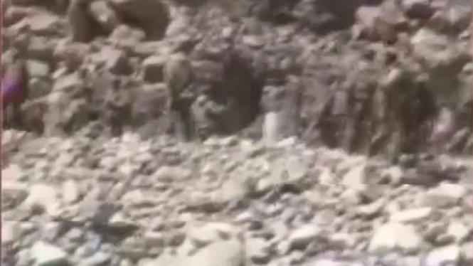 VIVA Militer: Bentrokan tentara China dan india di Ladakh.